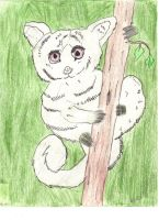 Bush Baby by HowlingValley