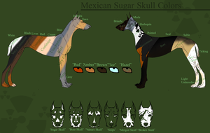 Mexican Sugar Skull Color Sheet by PittMixx