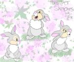 Thumper sketches by DisneyGirl52
