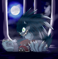 A Different Werehog by Hylian-Rinku
