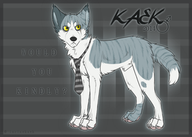 K A E K :: reference sheet 2 0 1 4 by incinekaek