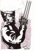 Wolverine in leather by Kid-Destructo