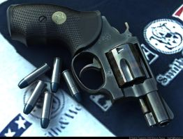 2Sm.Wesson Chief's Special by VladiT