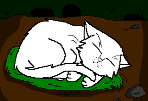 WARRIORS: Sleeping Cat Lineart by 825220