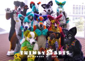 Anthrocon 2012: TA Photoshoot by TweekoWolf