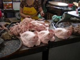 le pigs heads by troldemort