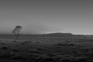 lonely moor by swandundee
