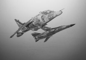 Harrier GR3 by NorthumbriaArt