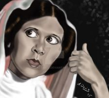 Princess Leia by adavis57