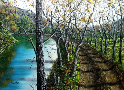 The Creek Road by DonBowling