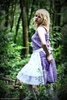 alice in wonderland: 2 by cainess