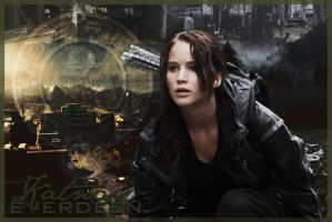 District 12 Tribute by lullabyoflies