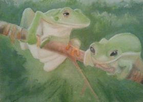 Treefrogs by tsquire