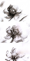 Shades Of Flower1 by Drrrakonis