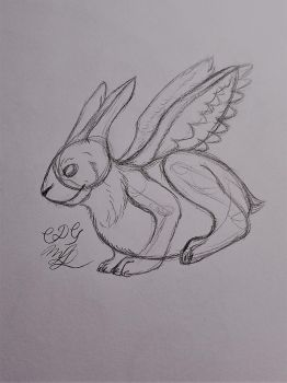 Winged Rabbit Doodle by Cookiedough-Gecko