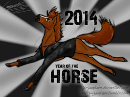 2014: YEAR OF THE HORSE by GingaAkam