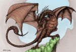 Wyvern (Color) by AnnaRDunster