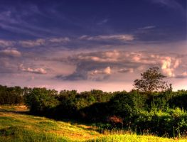 First HDR by overstimlutaion