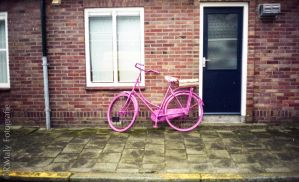 Pink bike by TLO-Photography