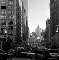 New York City XXIV by DanielJButler