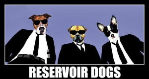 Reservoir Dogs by deeds666
