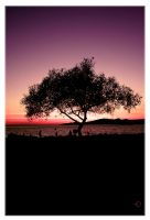 Tree of Life by Clevich