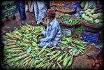 The Corn Seller by 100-days