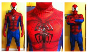 Spiderman Cosplay Commission by Cadmus130