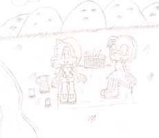 Sally and Amy Having a Picnic WIP by Envytheskunk