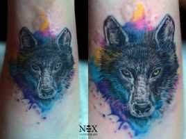 Watercolor wolf by mattynox
