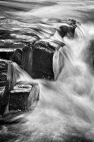 Horse Race Rapids I by FAceleSS-21