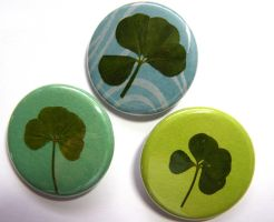real four leaf clover buttons for sale by michellescribbles
