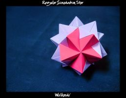 Regular Icosahedron Star by wolbashi