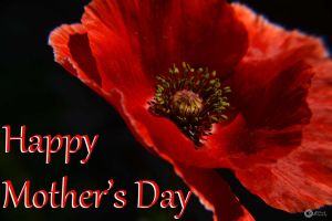 To all the mothers...in English by Philatx
