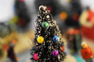 Oh Christmas Tree, Oh Christmas Tree by SharPhotography