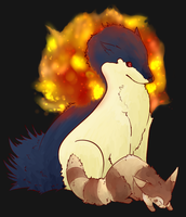Typhlosion and Furret by Gravewatch