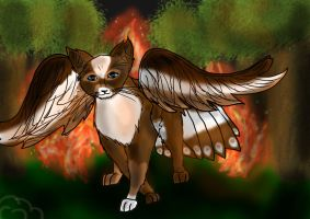 Fire - AT with Kamillenherz by Cloud-Cat