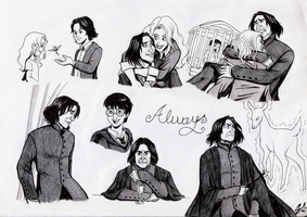 Lily...after all this time ?  Always by giulal