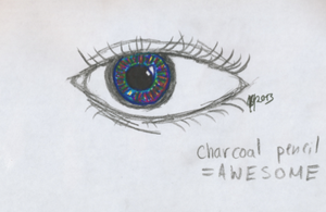 Charcoal pencil eye and new pens by Ivywhisker99