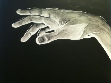Hand Scratchart by nannon15