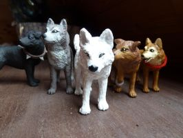 wolfs rain pack by spiritdaughter