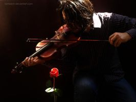 Melodia solitaria by Lambech