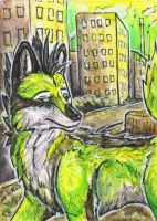 aceo Carbon by Kirsch-vanderWit
