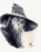 Gandalf the Grey - DSC by gph-artist