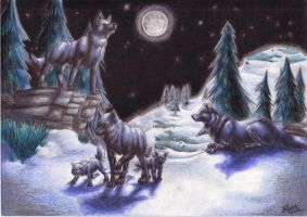 Wolves at night by Naura-nocta