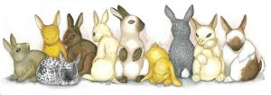 Bunnies by ivoryleopard