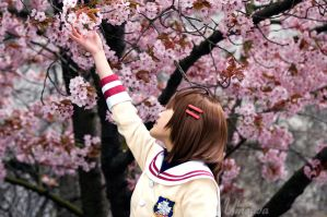 -CLANNAD- Spring is Here by Umeiwa
