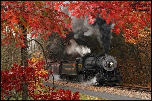 Fall Steam by DragonWolfACe