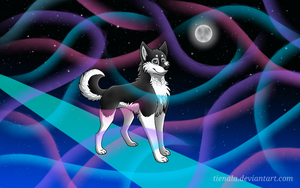 Shadow-D-Husky by Tienala
