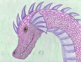 Purple dragon by michal-sobota